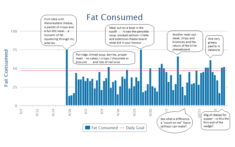 A life in Graphs #1 - Fat Chart